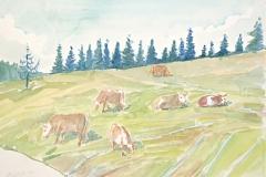 13015, Kuh, Aquarell/Papier, 1998, 38x56 cm