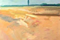 0660, Felder, 65x50 cm, Acryl / Hartfaserplatte