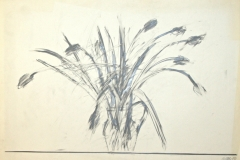 14094, Modern, Kohle/Papier, 62,5x84 cm