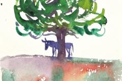 13035, Esel, Aquarell/Papier, 19x14,5 cm